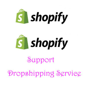 Professional Dropshipper Shopify Dropship Company United States Dropshipping Agent