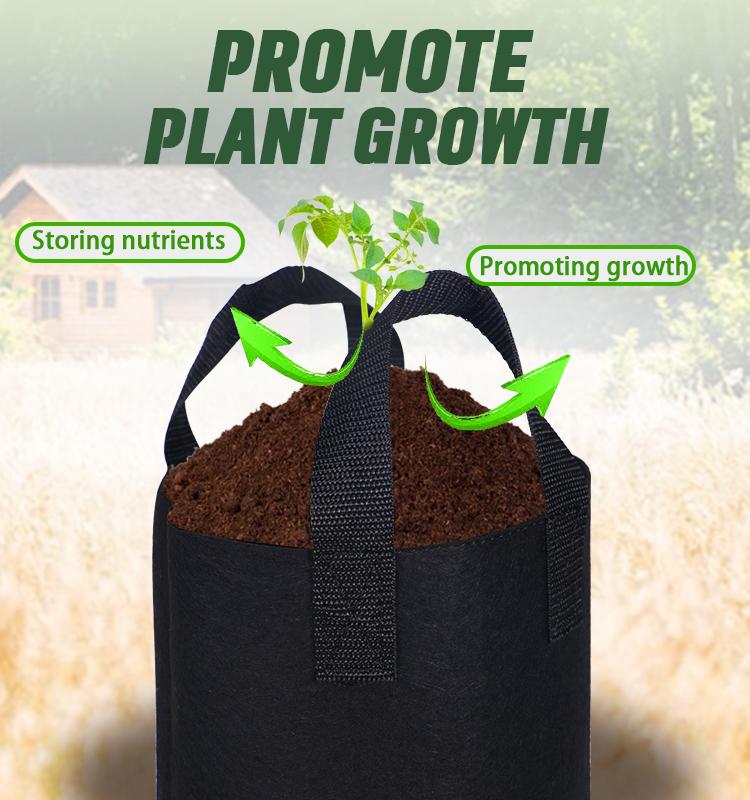 Neue Produkt 2020 14*18 1 Gallonen Non-woven Pflanzung Beutel Biologisch Abbaubar Kindergarten Wachsen Taschen Garten Obst Tasche