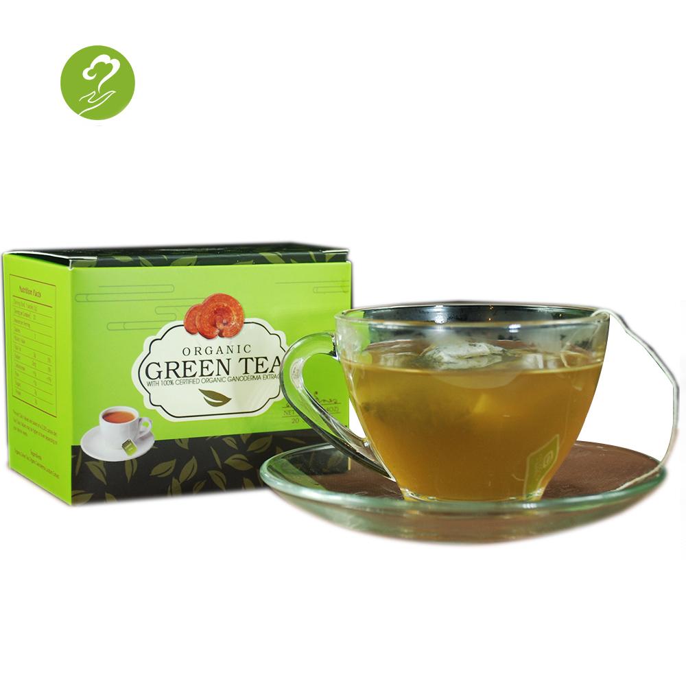 high quality reishi ganoderma lingzhi herbal extract healthy green tea - 4uTea | 4uTea.com