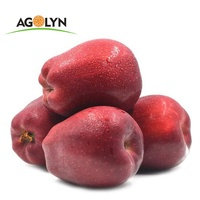 Fluffy juicy 70mm big size china origin Huaniu Apple