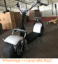 Brand New Original 2019 BEST SELLER top speed 50km/h 3000W 2000W electric <span class=keywords><strong>scooter</strong></span> 1000w citycoco <span class=keywords><strong>scooter</strong></span> ASAP SHIP OUT