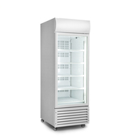 Low Noisy Vertical Glass Door Deep Display Ice Cream Refrigerator Freezer