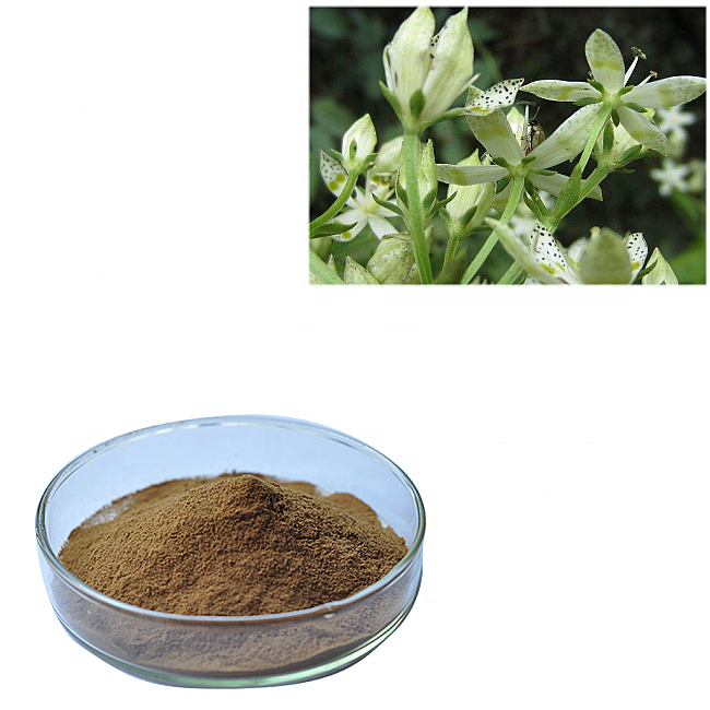 Whole sale price swertia chirata extract powder  20 percent swertiamarine for healthcare