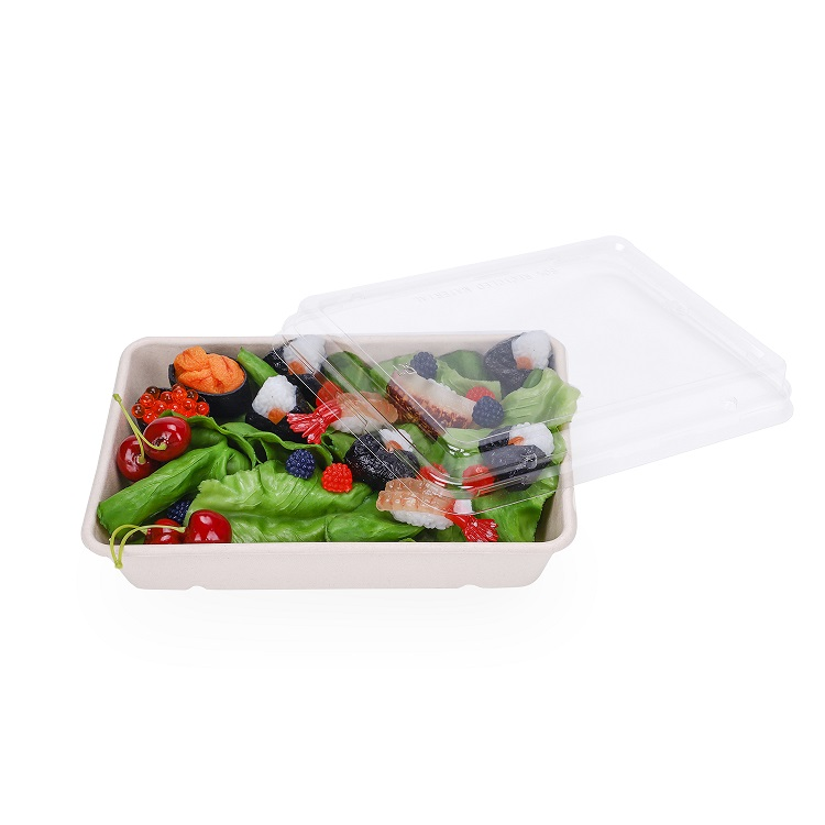 Food Storage Sugarcane Bagasse Molded fiber Containers with Clear Lids
