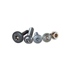 Special fasteners Inner plum bolts and screws and rivets