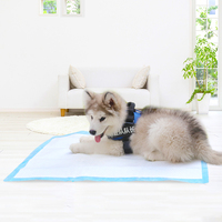 Hot selling disposable dog pad with high quality