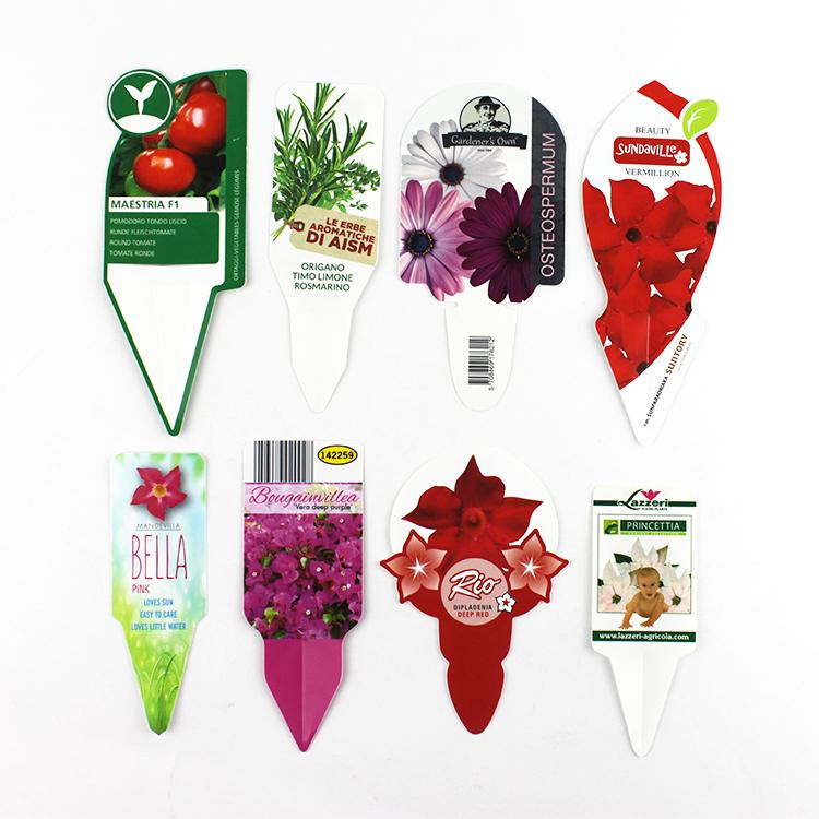 plastic plant tag seed name hanging tag