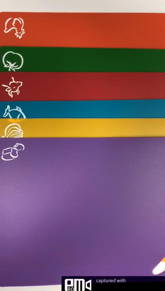 다채로운 음식 학년 유연한 접는 PP 도마 다목적 플라스틱 커팅 보드 레스토랑 가정용