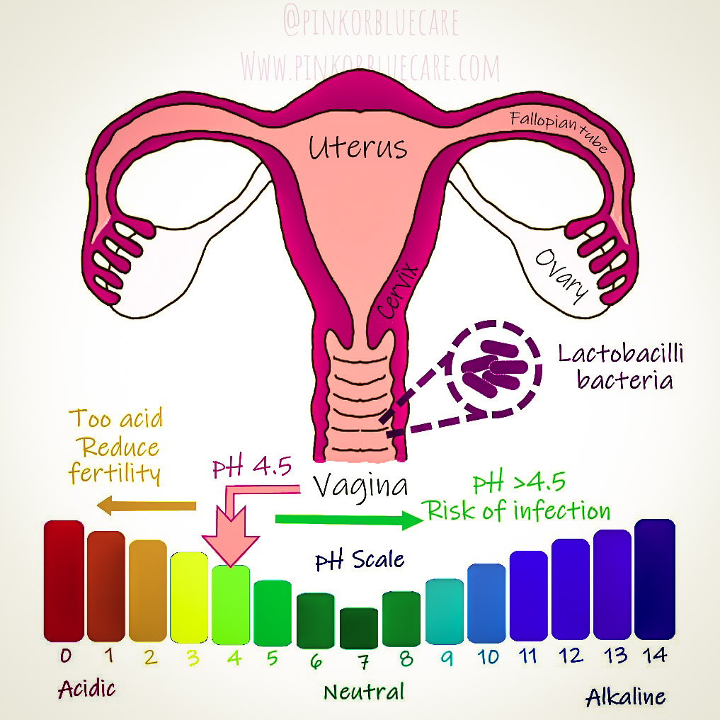 Ladies, let's talk about your vaginal ph