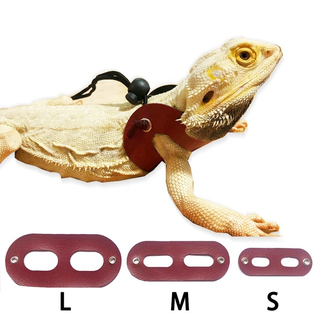 3 Size Pack Adjustable Soft Leather Reptile Lizard Leash Fbemior Bearded Dragon Lizard Leash Harness for Lizard Reptiles Amphibians and Other Small Pet Animals