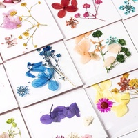 Wholesale Real Dry Flower Nail Decoration For 3D Nail Art DIY Mixed Dried Flowers Colorful 3D Dry Flower Nail Art Decoration