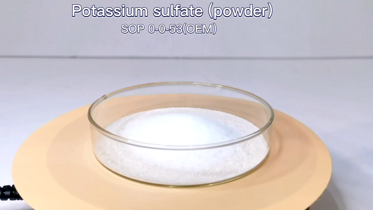 Potassium Sulfate 53% Fertilizer Crystal Shape in Good Price for Plant