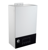 Electric boiler GFEB318E for both space heating and bathroom shower
