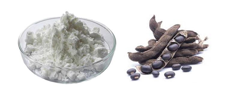 Natural 99% L-dopa Mucuna Pruriens Extract Powder