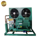 JZ01A China Bitzer Refrigeration Compressor 4 5 10 Hp 230V Air Cooled Condensing Unit For Freezer Cold Room