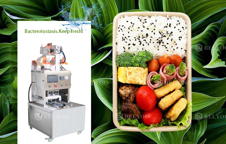 Automate Professional Vacuum Modified Atmosphere Packaging Manufacturer Health Meal Prep Trays Container Sealer