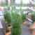 Plastic Indoor Decorative Waterproof Large Green Bamboo Artificial Plants, Artificial Bamboo