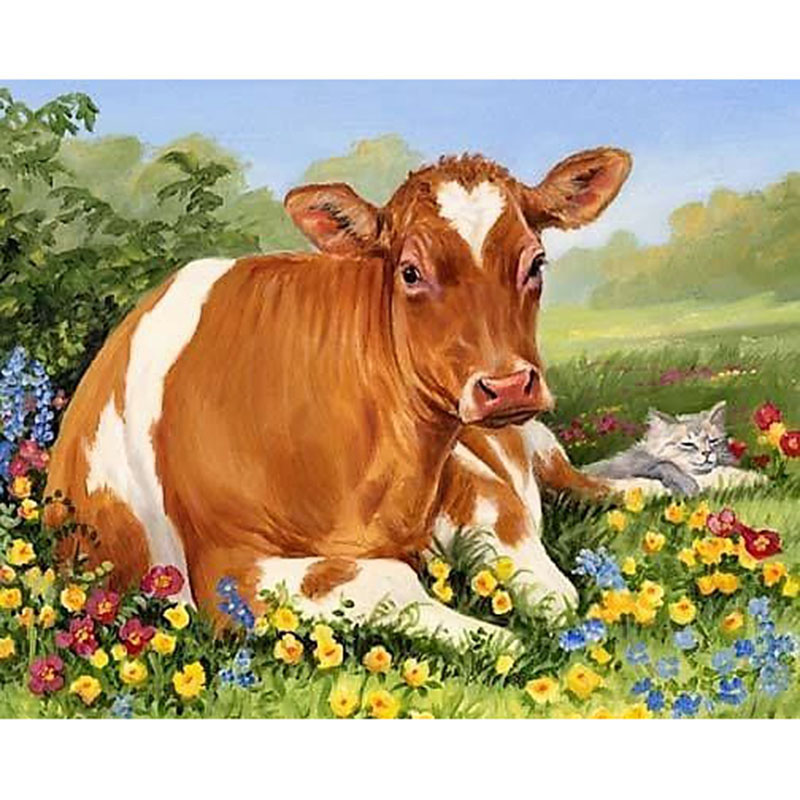 Открытка с коровами