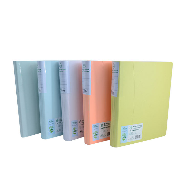 Eco-friendly plastic file folder,lever arch a4 ring binder,2 metal ring binder