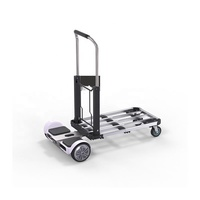 2 in 1 Foldable Hand Truck Warehouse Platform Electric Scooter Trolley