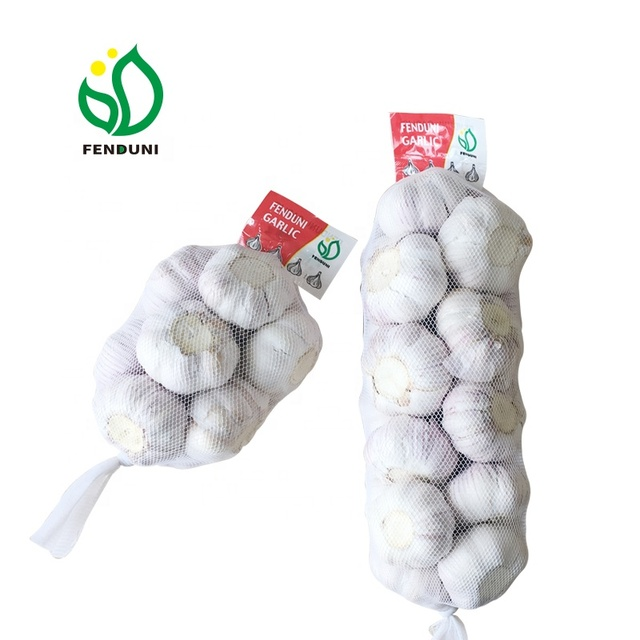 Wholesale Chinese Garlic import Garlic Price Fresh Vegetables