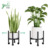 Wholesale Dark Bamboo Flower Pot Holder Display Rack With Pulley Indoor