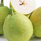 chinese pear fruit fresh you pears