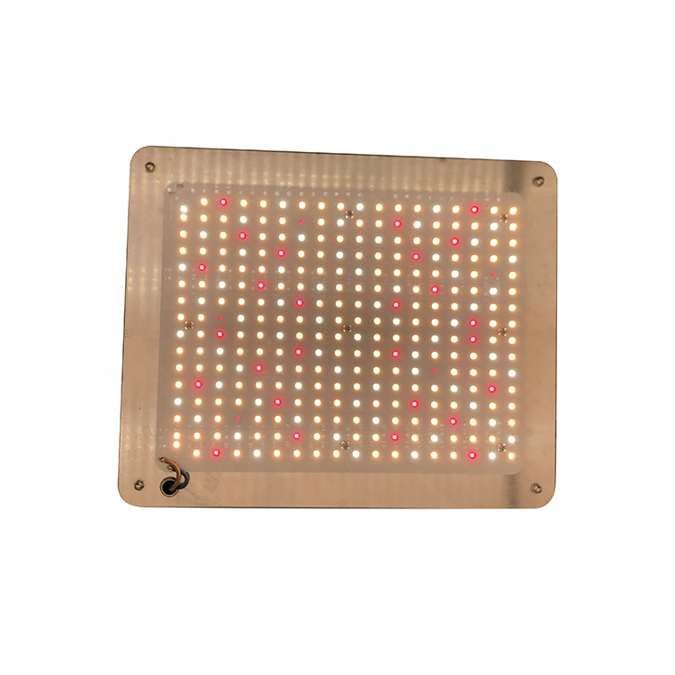 2020 newest red therapy lamp Factory professional grow light low emf 860nm 830nm 810nm 660nm 630nm red infrared heat lamp 110W
