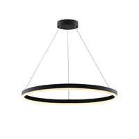 Modern Decoration Aluminum Ring Hanging LED Pendant Lights For Office