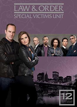 法律与秩序:特殊受害者 第十二季