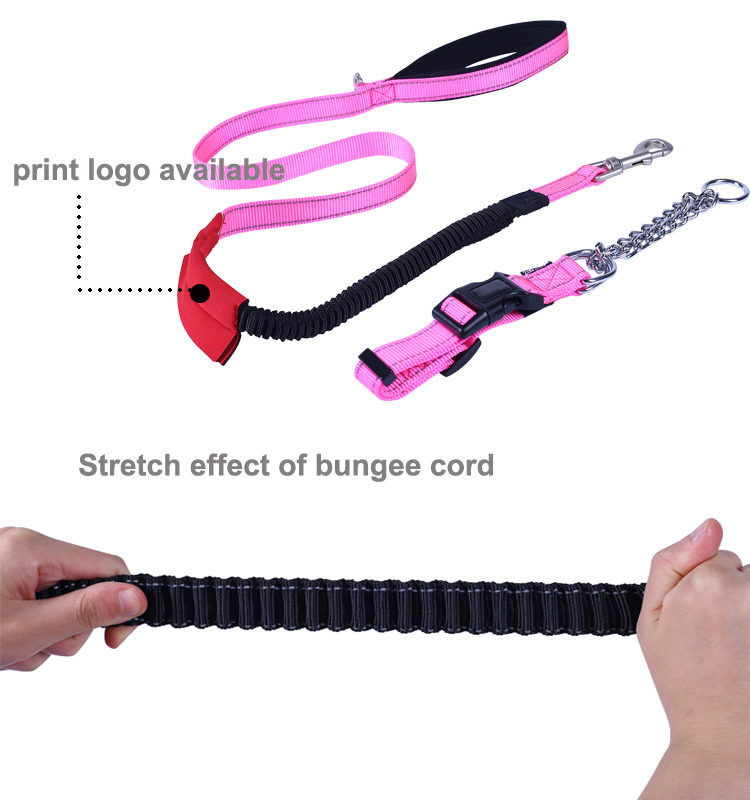 Amazon Hot Selling Custom Logo Strong Nylon Dog Leash with Highly Reflective Threads and Bungee Buffer Leash