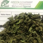 Spearmint Whole High Quality 2020 Crops
