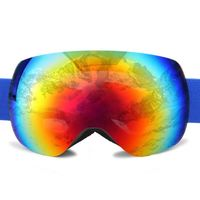 Removable Anti Fog Double Lens Snowboarding Polarized Magnetic Ski Goggles