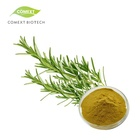 Leaf Rosemary Extract HPLC Bulk 60% Carnosic Acid Powder