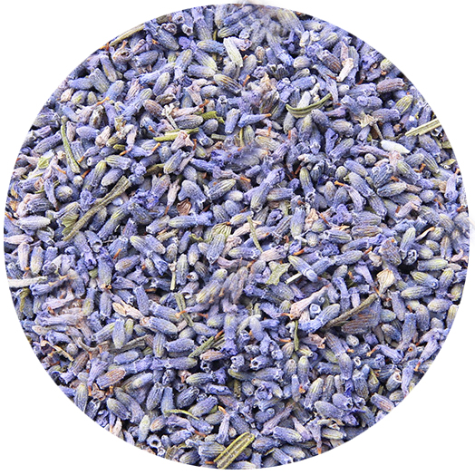 Pure Dried Health Benefit Lavender Bulk Flowers Tea Dried French Lavender Buds - 4uTea | 4uTea.com