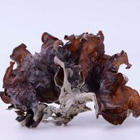 Nutritional Value Ear-shaped Wood Fungus Mushroom rare edible mushroom medical black fungus dried mushroom