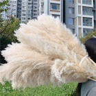 F-1592 Wholesale Discount Wedding Decoration Natural Dry Flowers 90CM Large Size Brown Dried Pampas Grass