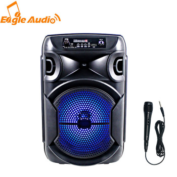 2020 new private good quality Karaoke portable 8 inch battery speaker