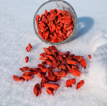 -Plaguicidas chino de Goji berry no salvaje superfruta no Ningxia/Qinghai