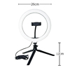 /product-detail/10-inch-photographic-lighting-mini-led-camera-selfie-ring-light-for-youtube-video-with-tripod-stand-cell-phone-holder-62590018383.html