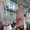 /product-detail/halal-cattle-slaughter-equipment-for-abattoir-62365382807.html