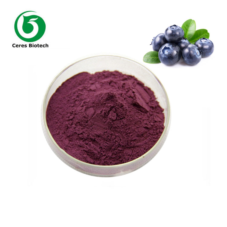 Factory supply grape seed extract OPC / proanthocyanidins 95% with best quality