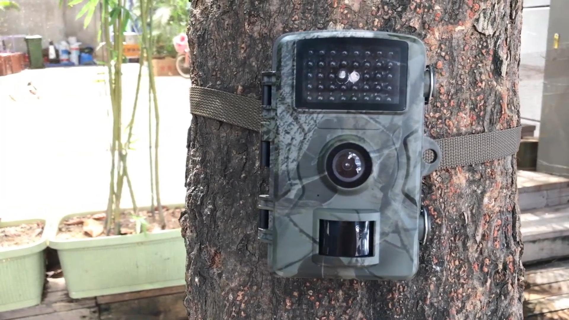 Animal Observation hunting camera   12MP 1080P Night Vision 15M  outdoor trail camera