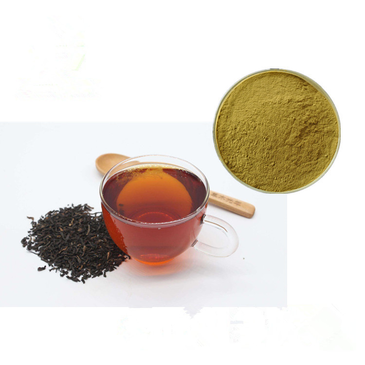 High Quality Water Soluble Black Tea Extract Polyphenols 10-95% - 4uTea | 4uTea.com
