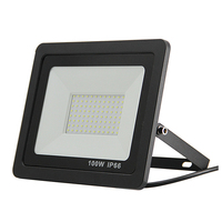 Waterproof 100W LED Flood Light Projector Lamp