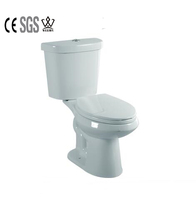 concealed cistern one piece shower s-trap toilet with watermark