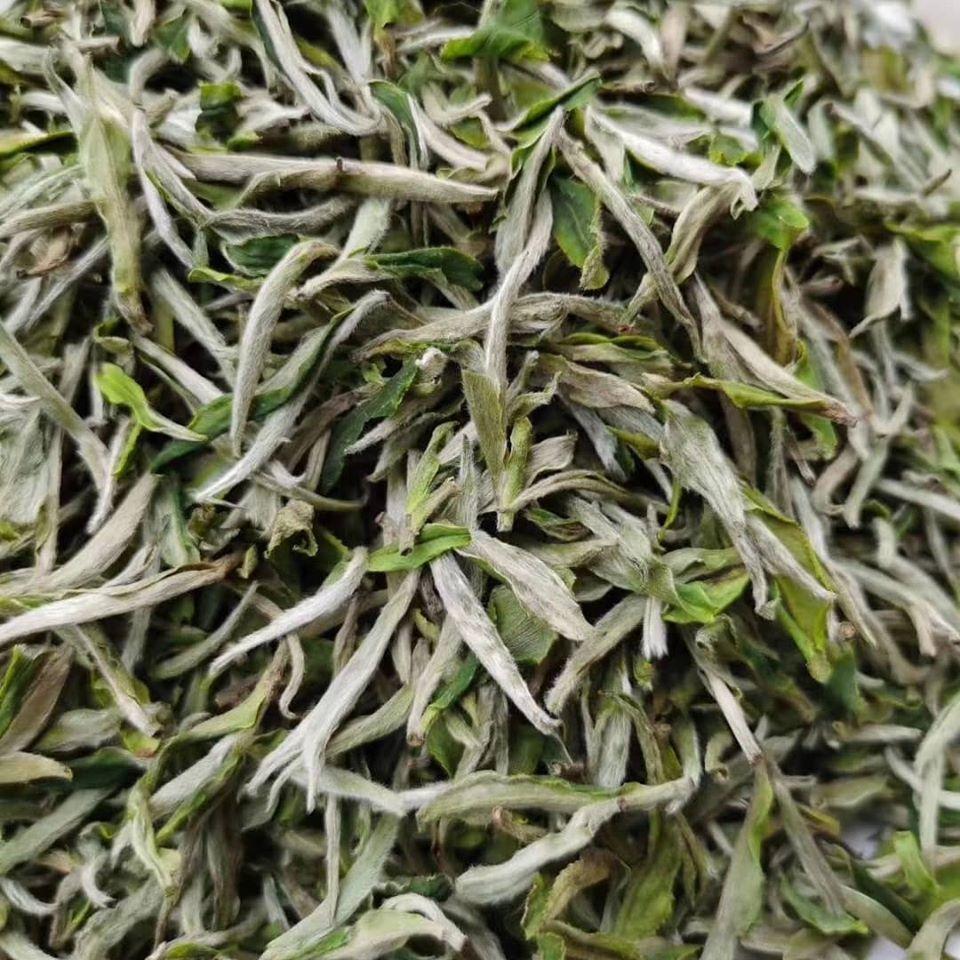 2020 Chinese new spring tea Fujian White Tea Silver Needle loose leaf tea - 4uTea | 4uTea.com