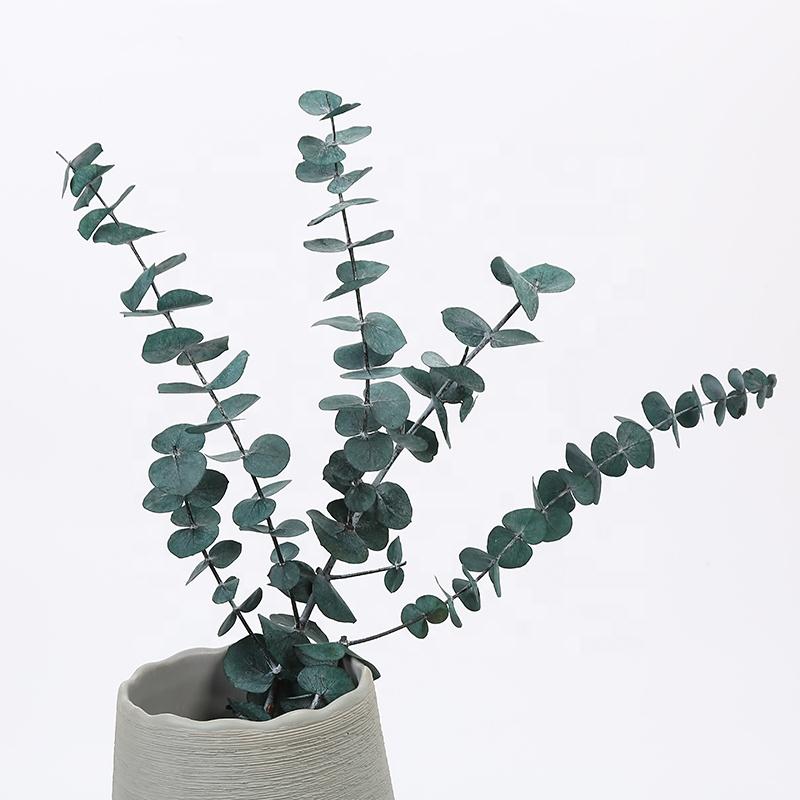 สดและรักษาช่อดอกไม้ Eucalyptus Baby Blue ทนทานสำหรับของขวัญวันวาเลนไทน์