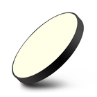 Popular Indoor led ceiling light Acrylic Round Shape For home bedroom Living Room