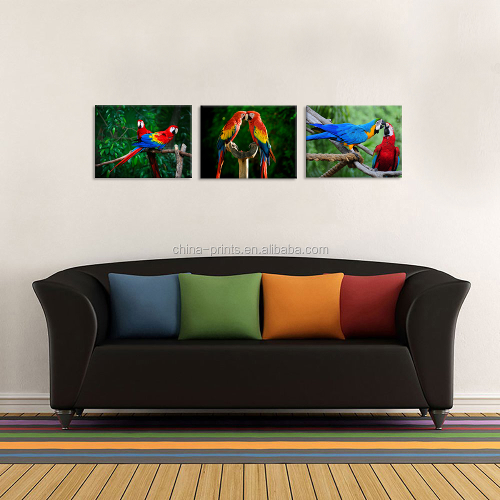 3 Pieces Animal Canvas Wall Art Parrots Lovers Macaws Bird Standing On Tree Branch Poster Painting Artwork For Home Decoration Buy Parrot Wall Art Macaws Picture Bird Picture For Living Room Product On